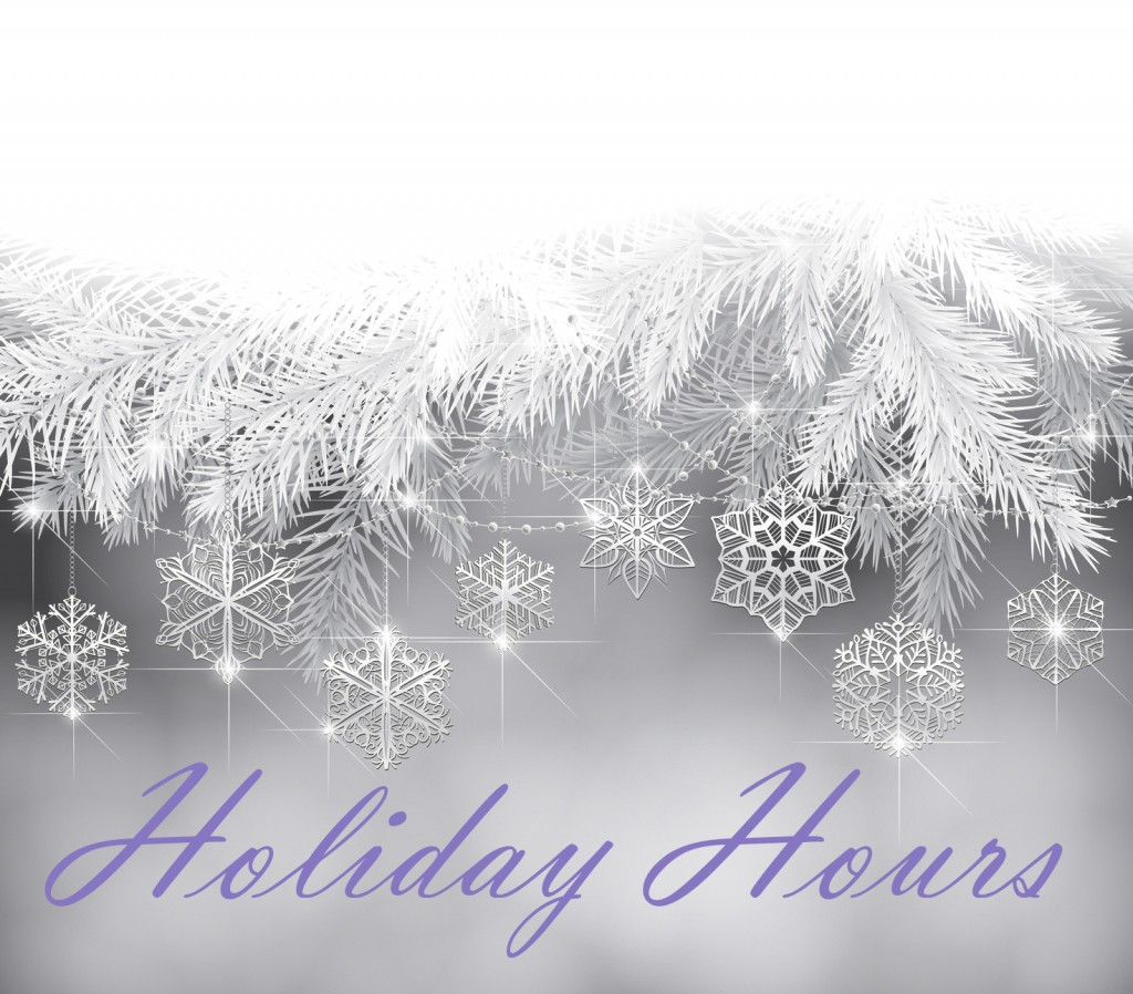 holiday-hours-snow-1024x898